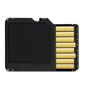 8GB microSD card with SD adapter